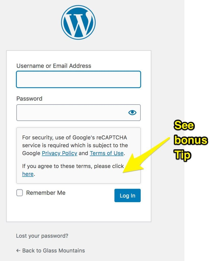 Example of WordPress login screen - this time showing that Google's reCAPTCHA needs terms agreeing to