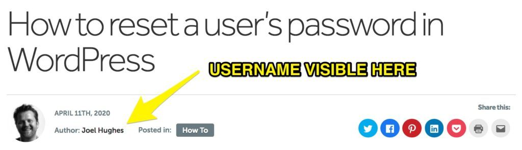 How a username can display on a WordPress site (e.g. a blog post)
