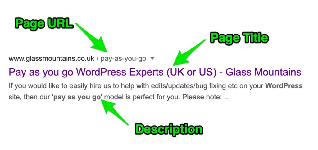 Google SERPS listing example